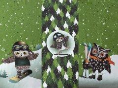 French Terry - Panel - Schnee Eule - Stenzo - grün - weiß