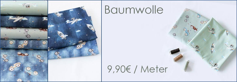 Baumwolle-waschbaer